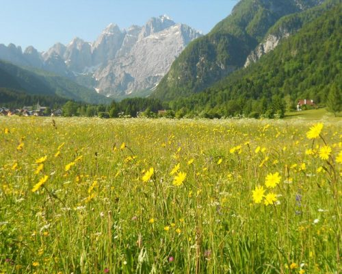 Valcanale: relaxation, nature and magic (Part 2)